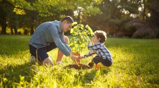 Vater und Sohn pflanzen einen Baum