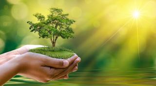 Menschenhände schützen die Natur
